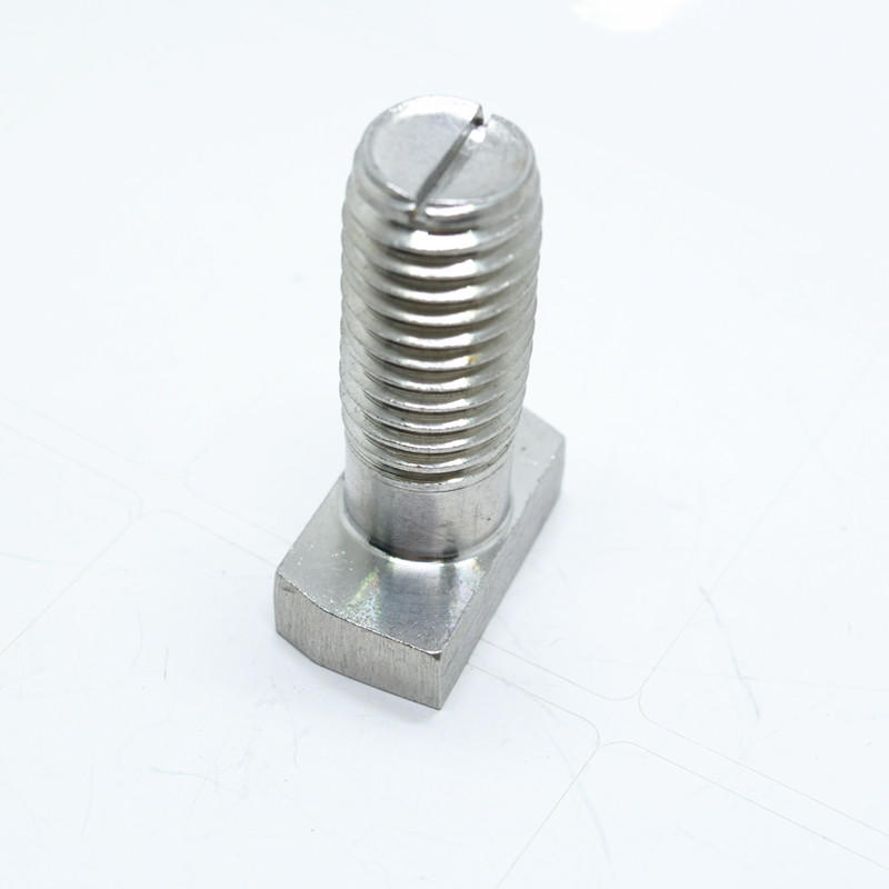 Stainless steel T head bolt with slott